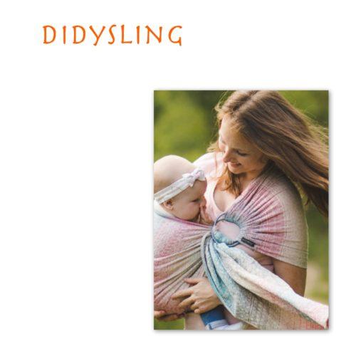 Didysling Didymos