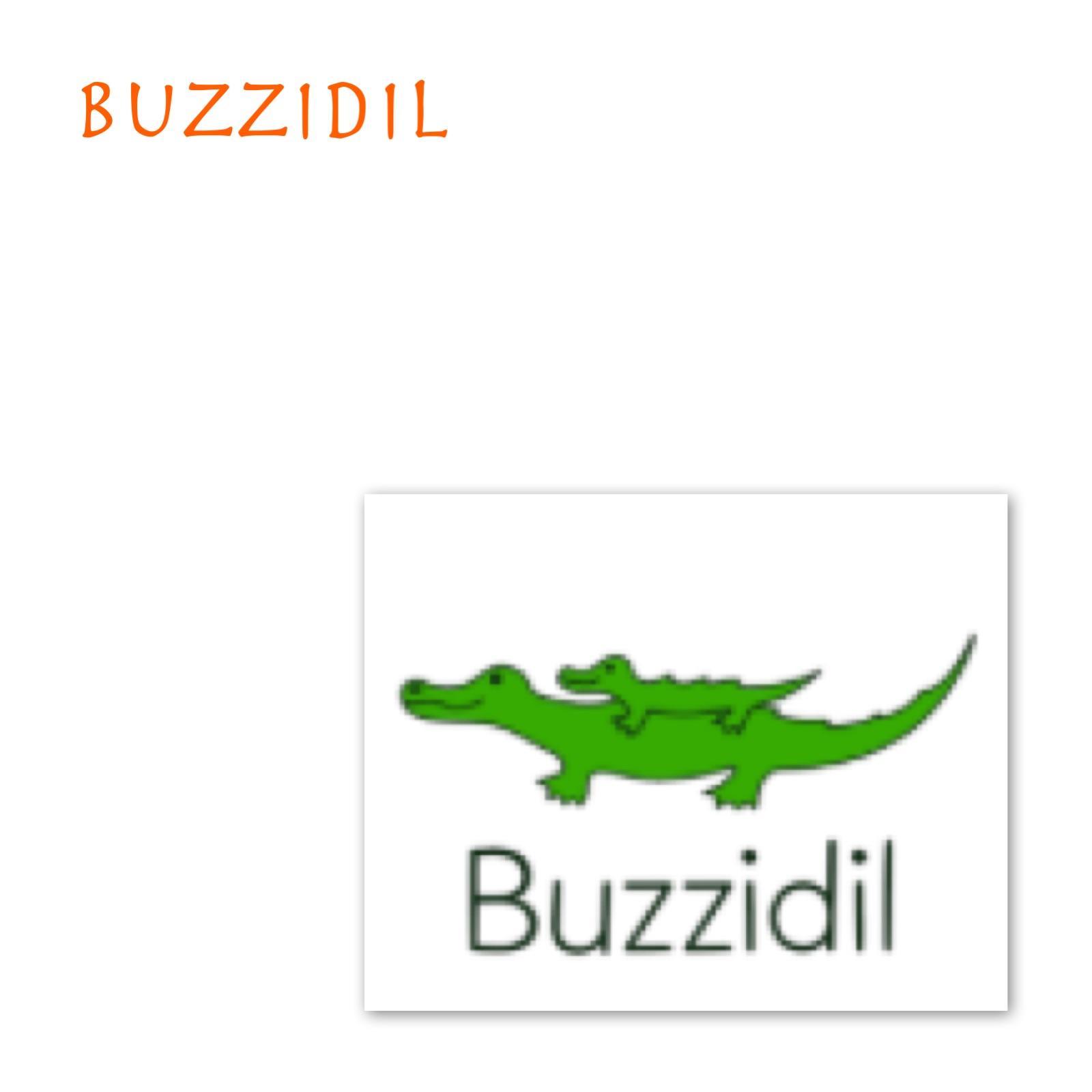 Accessoires Buzzidil
