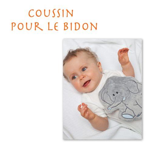Coussin noyaux / pépins